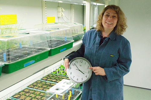 Eriksson, Maria E - Circadian Clock Function and its Importance for the Regulation of Growth