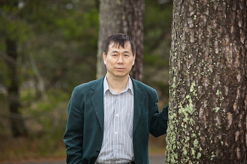 Wu, Harry - Quantitative Genetics and Tree Breeding